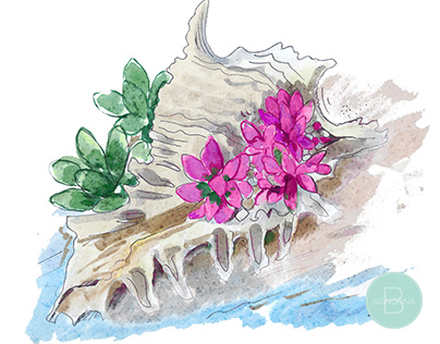 Seashell Succulent and Cactus Floral Illustration