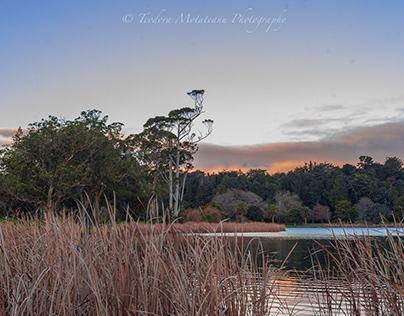 Rotoroa Lake, Hamilton, New Zealand
