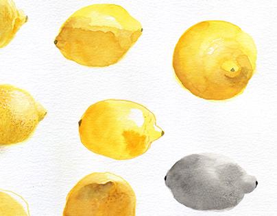 Étude documentaire de fruits