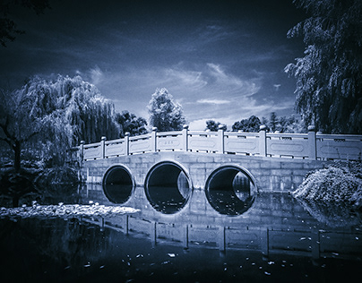 The Huntington Library in Infrared