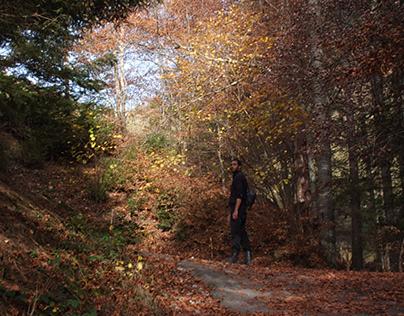 Charmey, charme des couleurs d'automne.