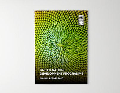 UNDP Annual Report 2020