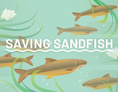 Saving Sandfish