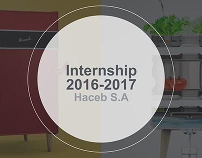 Internship 2016 - 2017 Haceb S.A