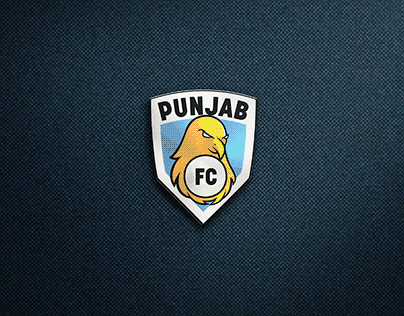 Brand Redesign   Punjab FC