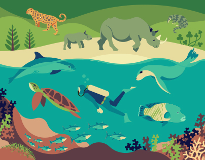 World Wildlife Day 2017 Official Poster