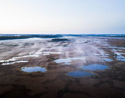 Marshland - Finland