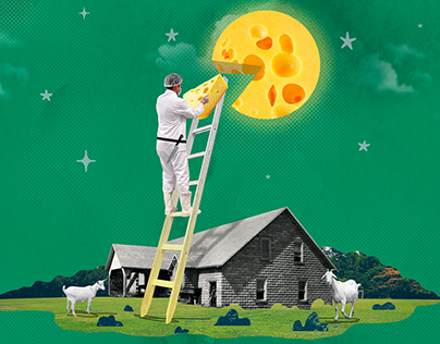 Illustrations for Sber /Jun—Sep2020