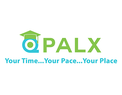 Explainer Video for QPALX