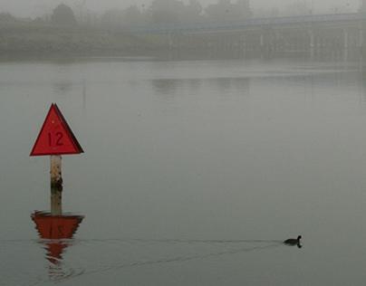 Fog Red