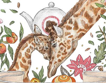 """""""Stir Me"""" tea packages' illustrations"""