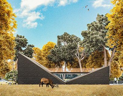 Z-House_017