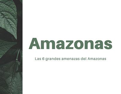 Amazonas sin hogar