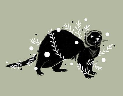 Botanical Ferret