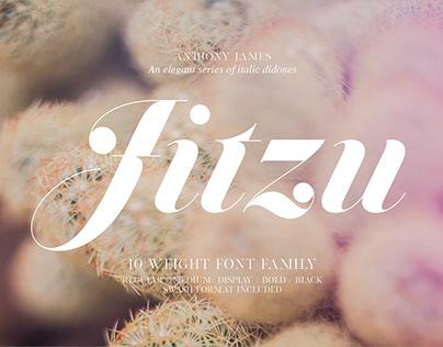 Jitzu Family | Font