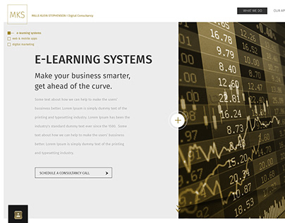 MKS website
