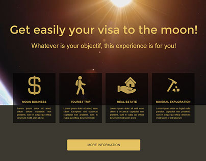 Visa for the moon reseller
