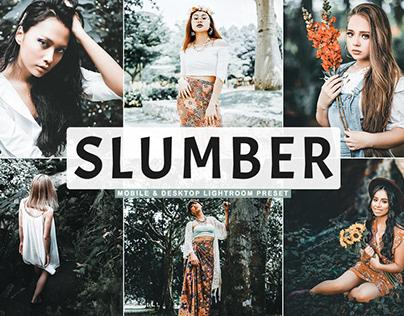 Free Slumber Mobile & Desktop Lightroom Preset