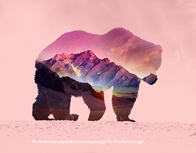 Concept Campaign with Double Exposure for WWF