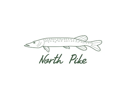 Branding and website for North Pike