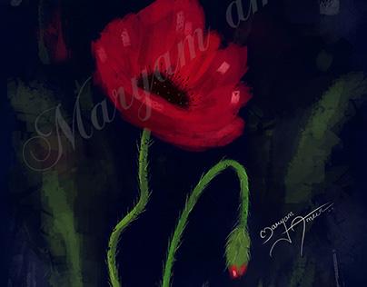 Poppy digital oil paint
