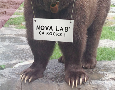 Nova' Bear