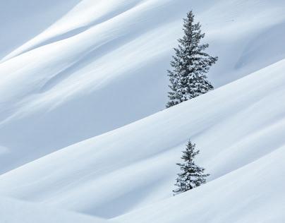 Trees and Peaks