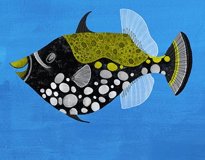 Clown Triggerfish Speed Paint- Art of David Ben