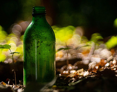 Bottle in the forest...