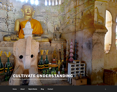 Website - Cultivate Understanding