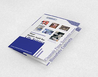 Promotional Design   Clean Air Systems