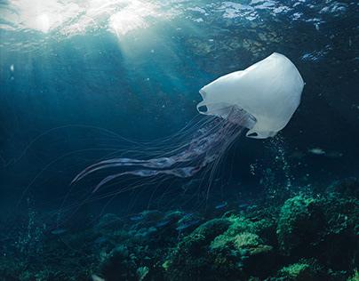 A plastic life