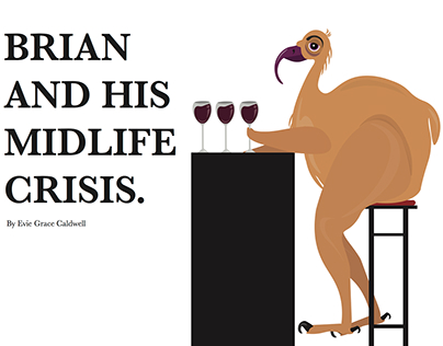 Brian & His Midlife Crisis - An Adult's Picture Book.