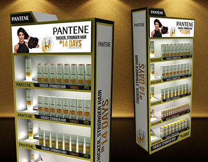 Pantene End Mode Displays