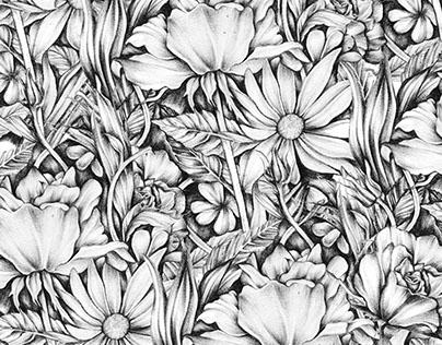 Pencil Florals