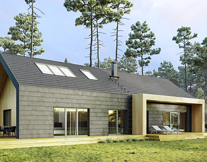 Finnish Houses Visualization Series. House №4
