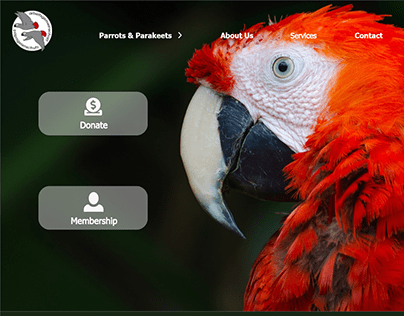 Working Group on Parrot protection Website re-design