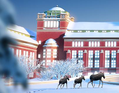 Museum of Natural History - Christmas Calendar 2018