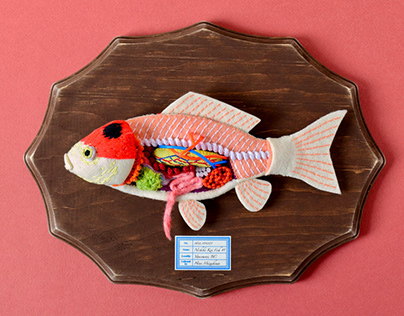 Anatomy of Nishiki-Koi Fish #1