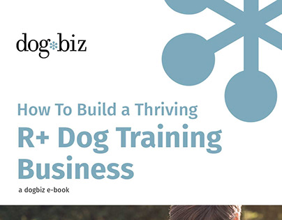 dogbiz Projects