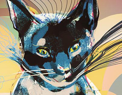 Quantum Cats