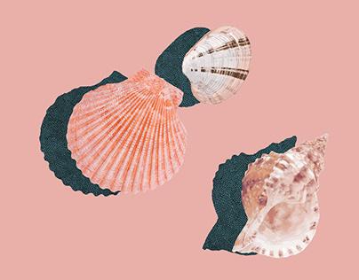 Book Cover, Mermaid