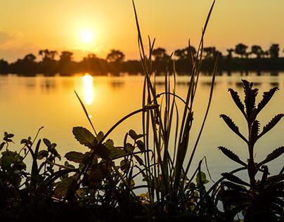 Sunrise at Tecolutla River