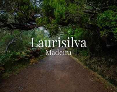 Laurisilva, Madeira