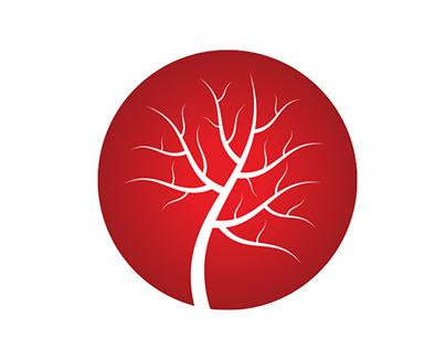 Vascular Centrum Chirurgii naczyniowej