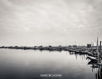 Carrasqueira (Black & Silver)