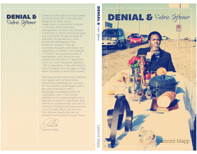 Denial & Fabric Softener - Book Cover