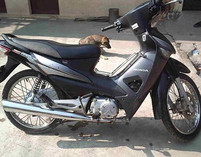 Chô cho thuê xe máy Hà Nội