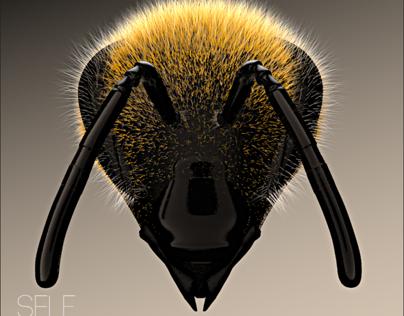 Bee Head