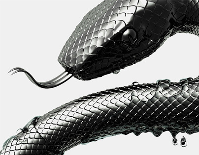 2013: Year of the Snake